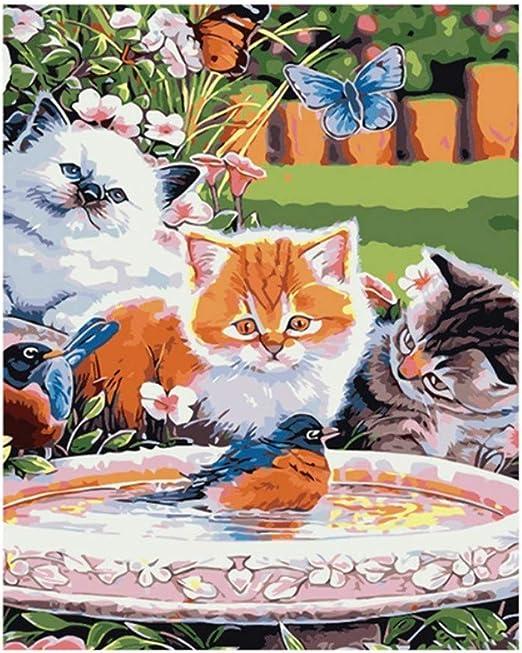 Waofe Cuadro Sin Marco Gatos Pájaro Diy Pintura Por Números Animales Pintura Al Óleo Pintada A Mano Para La Decoración Casera 40X50 Cm Ilustraciones: Amazon.es: Hogar
