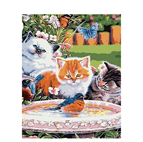 Waofe Cuadro Sin Marco Gatos Pájaro Diy Pintura Por Números Animales Pintura Al Óleo Pintada A