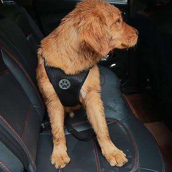 mesasa Chaleco de Seguridad para Perro, arnés Ajustable de Malla ...