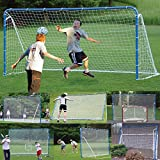 EZGoal 6-in-1 Multi-Sport Folding Tilting Backstop/Goal, Blue (Soccer, Baseball,Golf, Lacrosse, Hockey, Tennis)