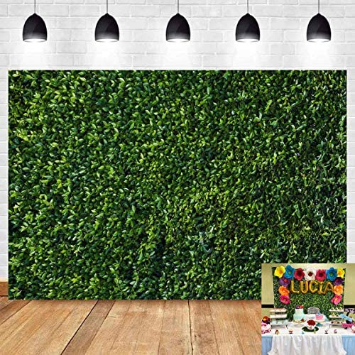 Renaiss 20x10ft Green Leaves Backdrop Natural Greenery Leaf Wall Green Lawn Photography Background Outdoor Baby Shower Party Baby Birthday Lover Wedding Bridal Shower Portrait Photo Studio Props