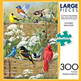 Buffalo Games Hautman Brothers - Songbird Menagerie - 300 Large Piece Jigsaw Puzzle