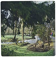 3dRose LLC 8 x 8 x 0.25 Inches Mouse Pad, Beautiful Green Scene Near The Blarney Castle In Ireland Done In A Smudge Finish and A Poster Finish (mp_44115_1)