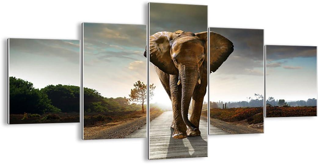 f/ünfteilig zum Aufh/ängen bereit Bildnummer 0214 f/ünf Teile Bild auf Glas Kunstdruck H/öhe: 70cm Bilder Breite: 125cm GEA125x70-0214 Glasbilder mehrteilig
