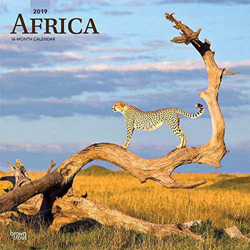 Africa 2019 12 x 12 Inch Monthly Square Wall Calendar, Travel Africa Madagascar Ethiopia Johannesburg Cape Verde (Multilingual Edition)