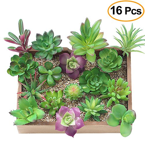 KUUQA 16 Pcs Mixed Artificial Succulent Flowers Plants Unpotted Decor Stems Fake Succulents Plants Bulk Assorted Picks for Home Decor Indoor Wall Garden DIY Decorations by KUUQA