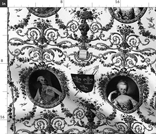 Rococo Fabric - France French Toile Baroque Marie Antoinette King Print on Fabric by The Yard - Sport Lycra for Swimwear Performance Leggings Apparel Fashion (Fabric Designer Toile)