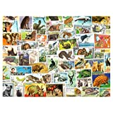 Animals : 100 Different Stamps Collection Mixture Packet Stamps for Collectors