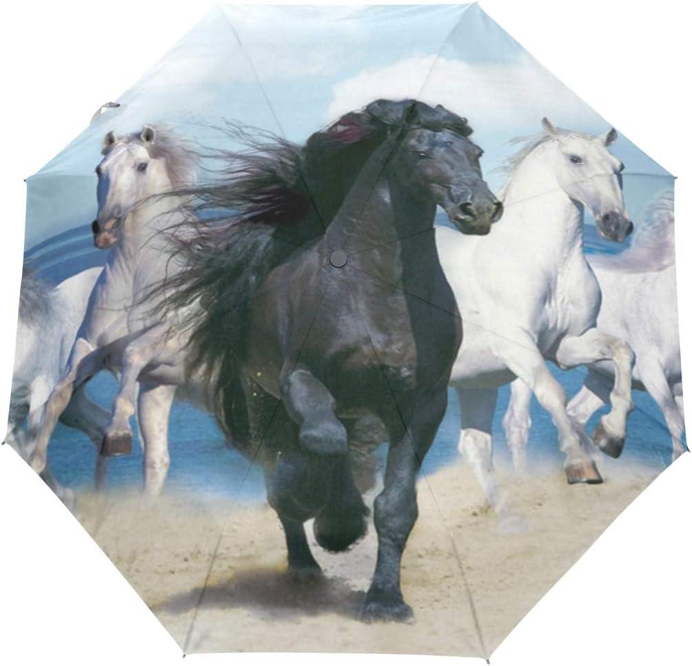 MALPLENA - Paraguas de Tres Pliegues con diseño de Caballo Negro y Cuatro Caballos Blancos para Hombre, Mujer o Regalo