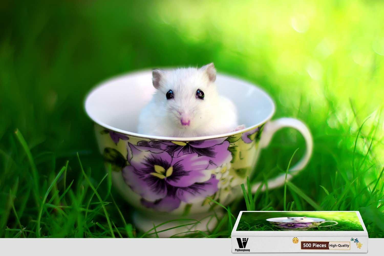 新品入荷 pigbangbang、20.6 X 15.1インチ、木製Largeサイズ X – a Littleホワイトマウスin Cup a Cup of Coffee – 300ピースジグソーパズル B07F7ZXNJC, 南那須町:215ab1c3 --- 4x4.lt