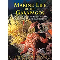 Marine Life of the Galapagos: The Diver's Guide to Fish, Whales, Dolphins and Marine Invertebrates (Odyssey Marine Life of the Galapagos)