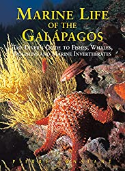 Marine Life of the Galapagos: Divers' Guide to the Fish, Whales, Dolphins and Marine Invertebrates, Second Edition (Odyssey Illustrated Guides)
