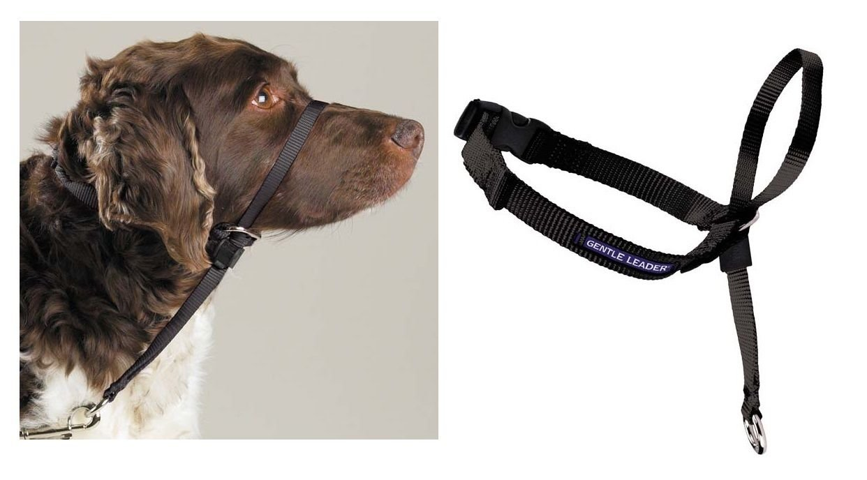 Gentle Leader Dog Head Collars - Training Stop Pulling Lunging Unwanted behavior(Large - 60 to 130 lbs)