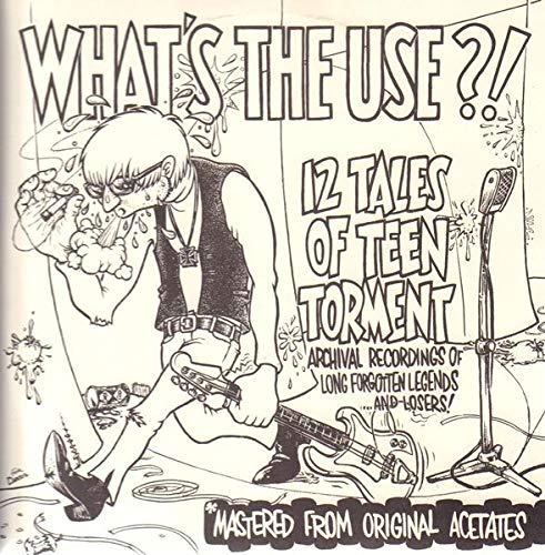 (What's the Use?! 12 Tales of Teen Torment)