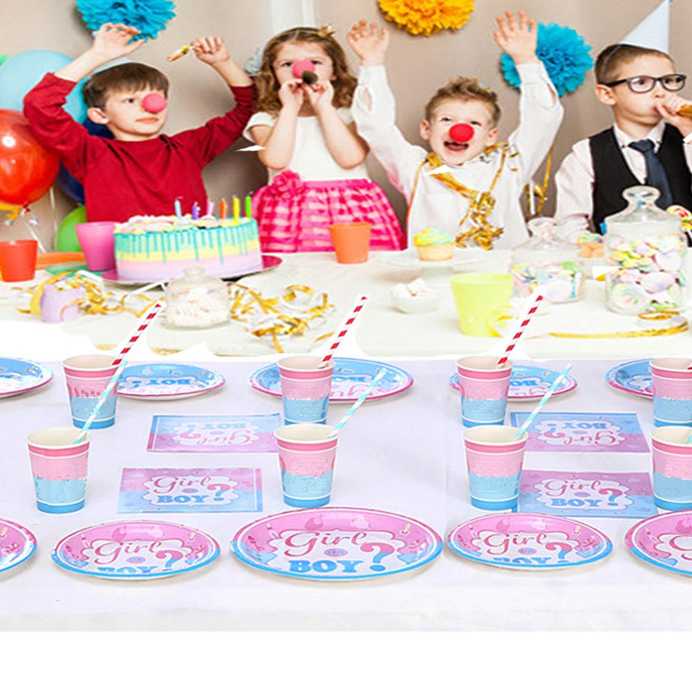 Gender Reveal Party Supplies Plates and Napkins Set, Baby Shower, Children\'s Party Boy or Girl Pink & Blue Birthday Party
