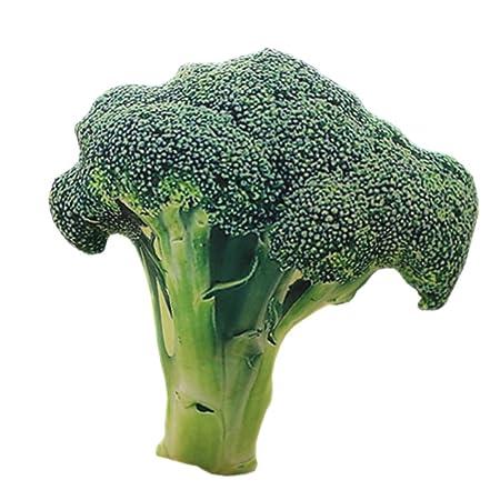 Amazon.com: Creative peluche Simulación verduras Cojín 20 ...