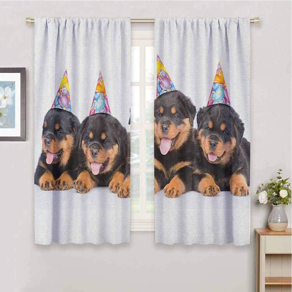 Amazon Com Bedroom Decor Blackout Shades Kids Birthday Rottweiler Puppies With Party Cone Hats Cute Puppies Dogs Art Print Print Sliding Soundproof Curtains W63 X L72 Inch Black And Marigold Home Kitchen