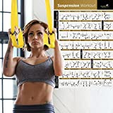 Suspension Exercise Poster Laminated - Strength