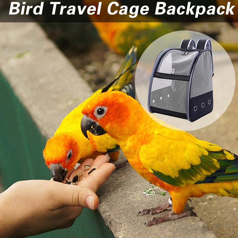 coolwild Clear Parrot Outing Backpack APET Transparent Acrylic Bird Travel Carrier Parrot Travel Cage Panoramic Pet Backpack for Puppy Kitten 32x41x17cm Honest