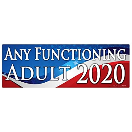 Any functioning adult 2020 sticker fs677 laminated political funny bumper car truck window election