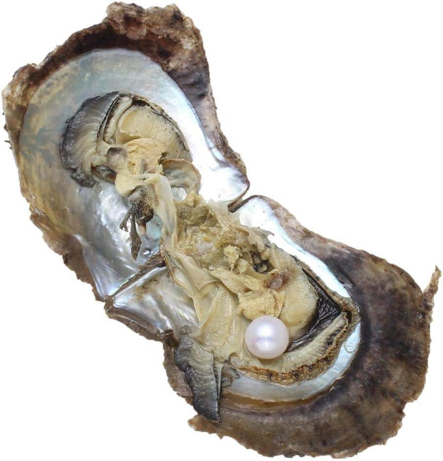 LONGTAP Ostras Akoya con perlas cultivadas en agua dulce amor ostra de 9 a 10 mm, Perla Ostra, blanco