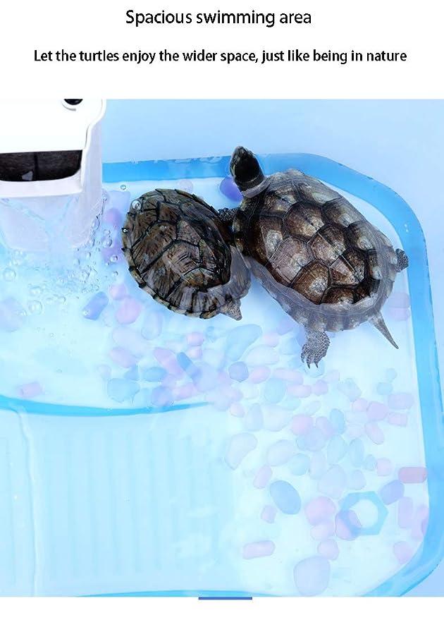 Turtle Cylinder Acuario con Terraza Grande Villa Agua y Tierra ...