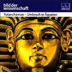 Tutanchamun - Umbruch in Ägypten - Bild der Wissenschaft