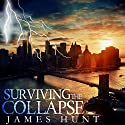 Surviving the Collapse: Audiobook by James Hunt Narrated by Mikela Drew