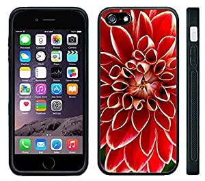 Pink Ladoo? Apple iPhone 6 Black Case - Beautiful Dahlia Bright Red Flower Gorgous