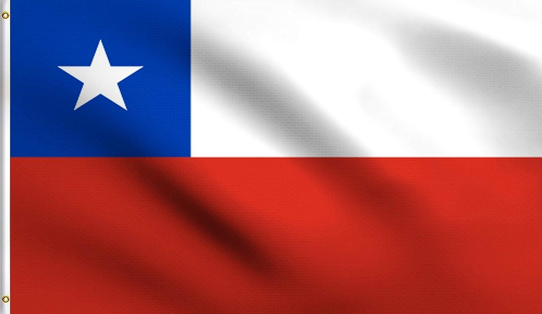 Amazon.com: DMSE Chile La Estrella Solitaria Bandera de ...