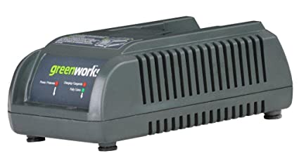 Amazon.com: Greenworks 29247 Cargador para 20-volt 2.6/6 Amp ...