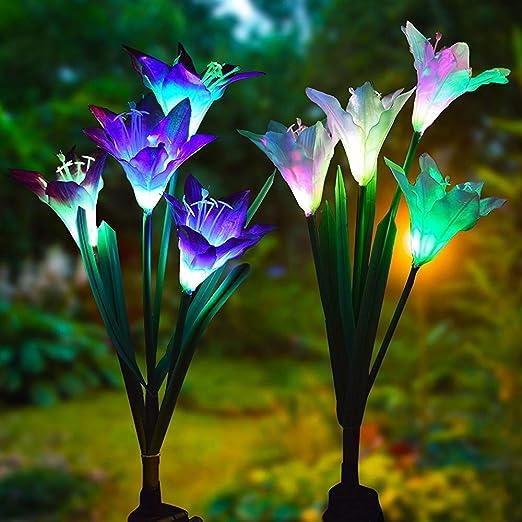 Luz solar para jardín, 2 unidades de luz solar para jardín con luz LED de color, luz decorativa para exteriores, jardín, césped, campo, jardín, visita: Amazon.es: Iluminación