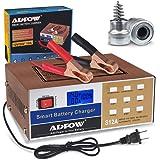 Amazon.com: Cargador de batería automático para coche, 12 V ...