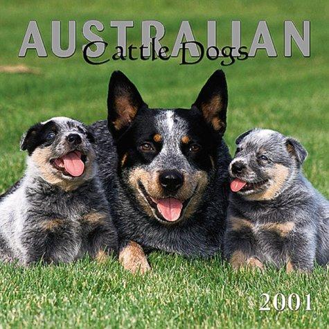 Australian Cattle Dogs/Blue Heelers 2001 Calendar