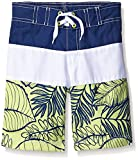 Gymboree Big Boys' Blue and Yellow Colorblock Swim Trunk