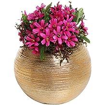 6.75 Inch Round Modern Metallic Gold Tone Ridged Ceramic Plant Flower Planter Pot, Decorative Bowl Vase