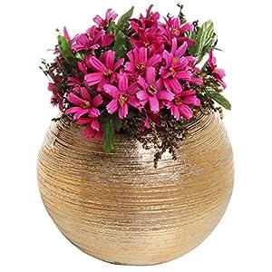 7-Inch Round Modern Gold-Tone Metallic Ceramic Plant Flower Planter Pot, Decorative Bowl Vase