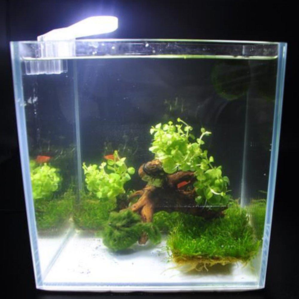 Decdeal LED Luces de Acuario de Forma de Abanico USB,Lámpara Clip-on con 8pcs Alta luz SMD5730 LED,luz Blanca: Amazon.es: Hogar
