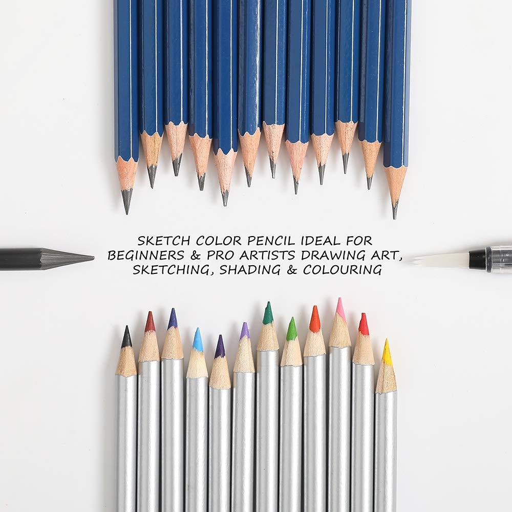 Libri da colorare o per la Scuola. per Adulti o Bambini per creazioni artistiche Lugoo Matite di Disegno Artistico,Set di 41 matite Colorate And Grafite di Carbonio Matite di Legno