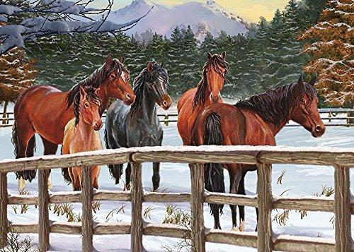 Snowy Pasture