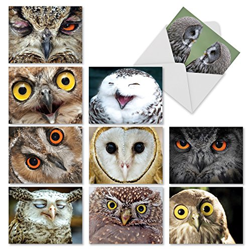 "10 Owl Themed Note Cards with Envelopes (4"" x 5 ¼""), Boxed Set of Assorted Blank Greeting Cards, 'What a Hoot' All Occasion Stationery for Birthdays, Thank Yous, Holidays #M1769BN"