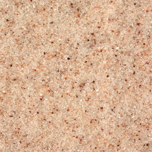 jurassic salt - 1