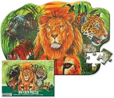 Wild Republic 64573 - Puzzle, gatos, 50 partes