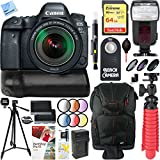 Canon EOS 6D Mark II 26.2MP Full-Frame Digital SLR Camera with EF 24-105mm IS STM Lens BG-E21 Battery Grip Accessory Bundle
