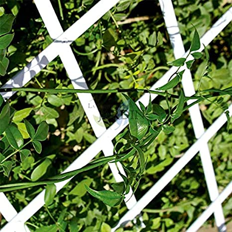 Celosía PVC blanco para jardín. Seto artificial extensible. (100 x ...