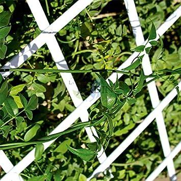 Celosía PVC blanco para jardín. Seto artificial extensible. (50 x 150 cm): Amazon.es: Bricolaje y herramientas