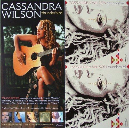 cassandra-wilson-thunderbird-two-sided-poster-new-rare-jazz-vocal-marc-ribot-keb-mo-jim-keltner-easy