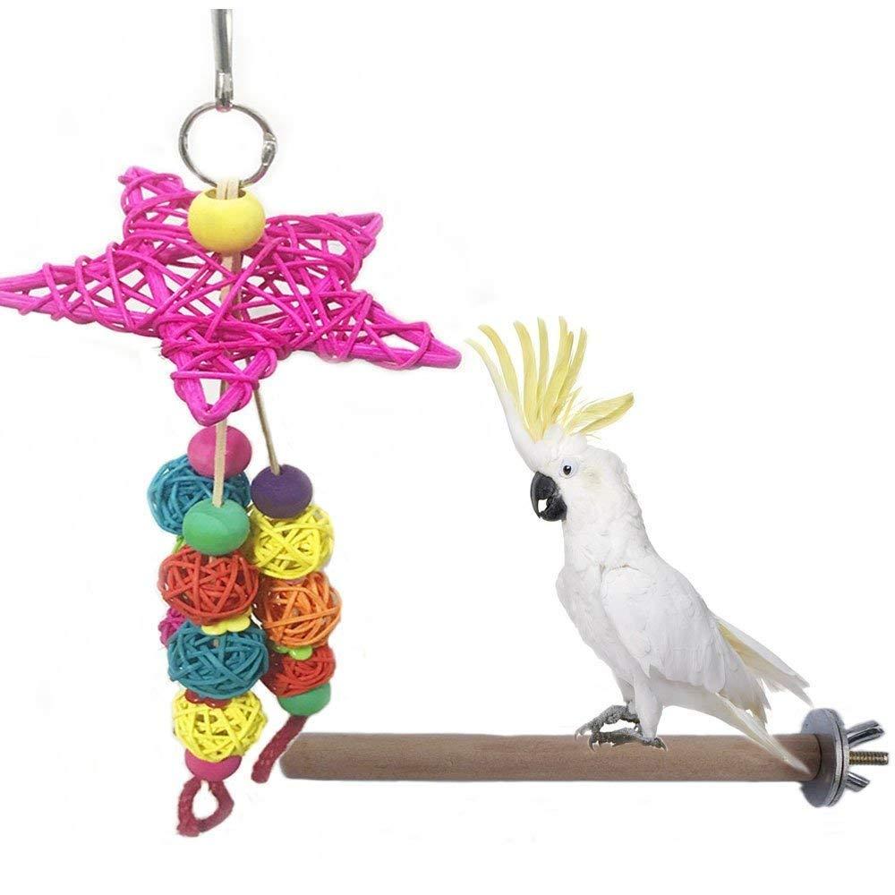 bird chew ball