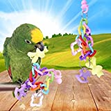 Rubyyouhe8 Bird Accessories&Colorful Pet Bird Parrot Parakeet Cockatiel Bracelet Chew Bite Toy Cage Decor Colorful Bird Parrot Toys Hanging Toy for Parakeets Cockatiels Small Pet