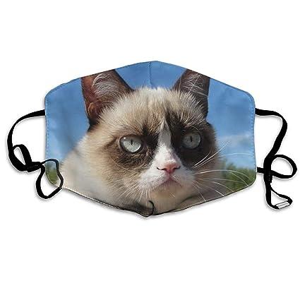 Amazon.com  Fechahao Grumpy Cat Mask - Filters Dust 0b2351c5f35e